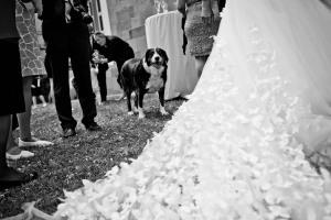 1049-Hochzeitsfotograf-Heilbronn1589_Doro_Jochen